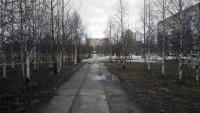 Сквер по ул.Нефтяников