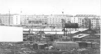 Вид на город, ул.Парковая. 1979г.