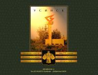 Первый дизайн www.usinsk.ru
