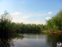р.Уса, июль 2003, приток