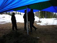 Дети под шатром