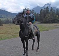 Кавказский скакун