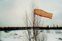 Красный флаг - неизменный атрибут маевки!