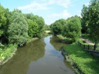 Ботанический сад. Река Яуза летом.