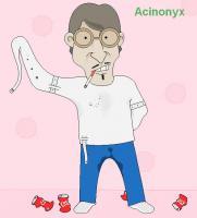 Acinonyx